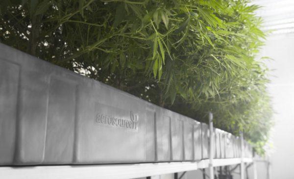 Aeroponic Grow Chambers